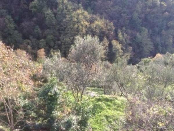 Appartamento in vendita a Rapallo, Montepegli, Con giardino, 70 mq - Foto 10