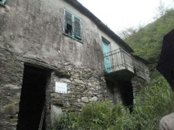 Rustico/Casale in vendita a Avegno, Con giardino, 100 mq