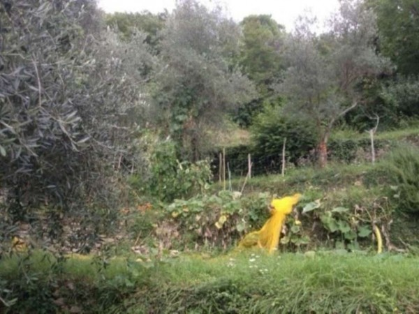 Rustico/Casale in vendita a Rapallo, Montepegli, Con giardino, 100 mq - Foto 14