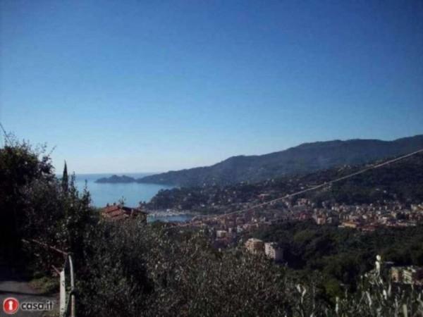 Rustico/Casale in vendita a Rapallo, Costasecca, Con giardino, 95 mq