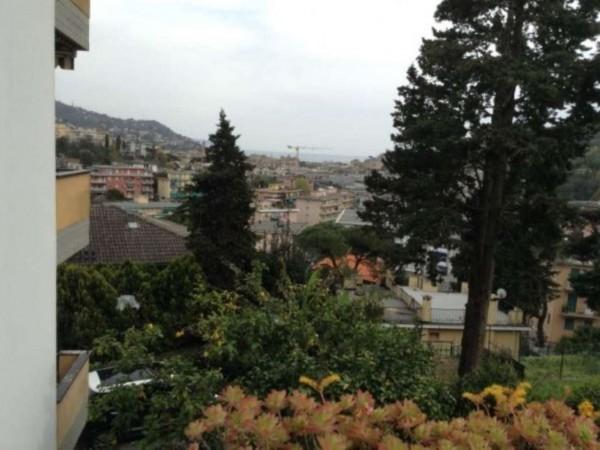 Appartamento in vendita a Rapallo, Golf, Arredato, con giardino, 60 mq