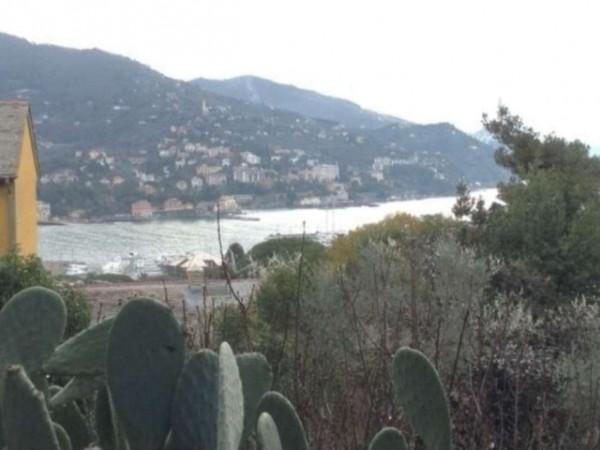 Villa in vendita a Rapallo, Con giardino, 340 mq - Foto 10