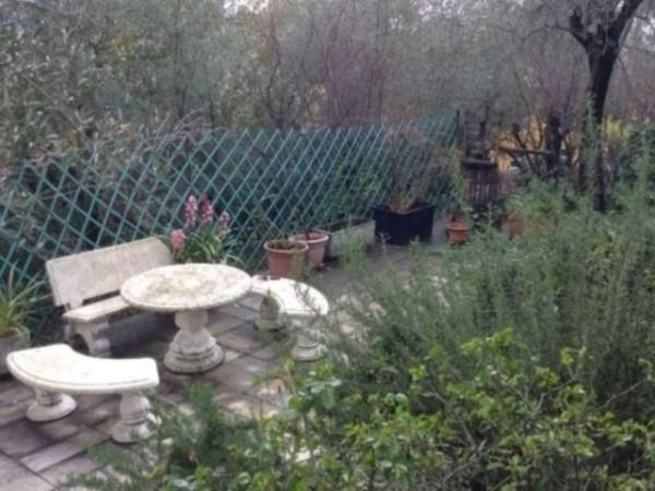 Villa in vendita a Rapallo, Con giardino, 340 mq - Foto 6