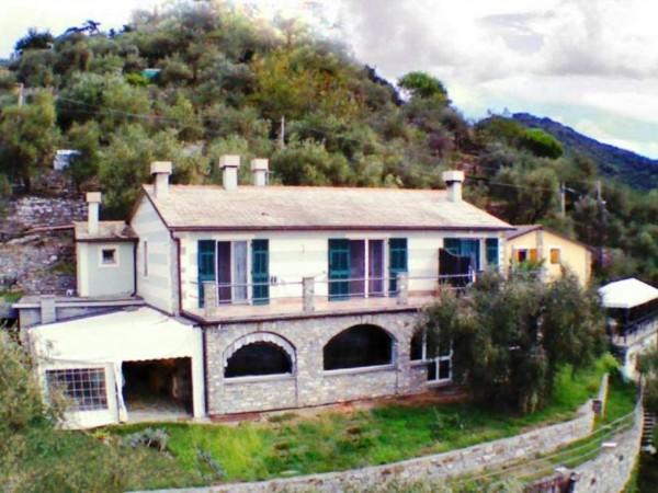 Villa in vendita a Rapallo, Sant'agostino, Con giardino, 270 mq - Foto 1