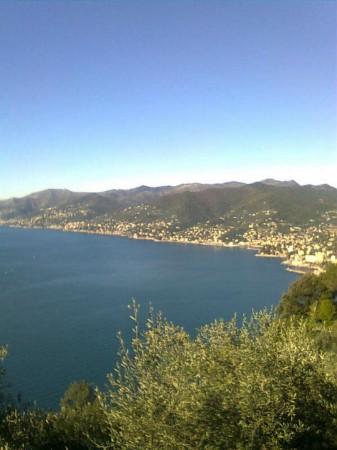 Appartamento in vendita a Rapallo, Mare, Arredato, con giardino, 110 mq - Foto 11