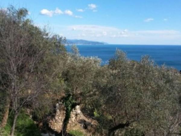 Villa in vendita a Santa Margherita Ligure, Santa Margherita, Con giardino, 125 mq - Foto 2