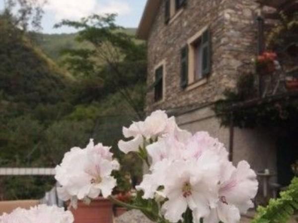 Villa in vendita a Zoagli, Zoagli, Con giardino, 290 mq - Foto 7