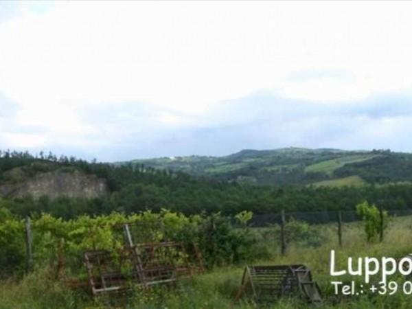 Villa in vendita a Murlo, Con giardino, 500 mq - Foto 9