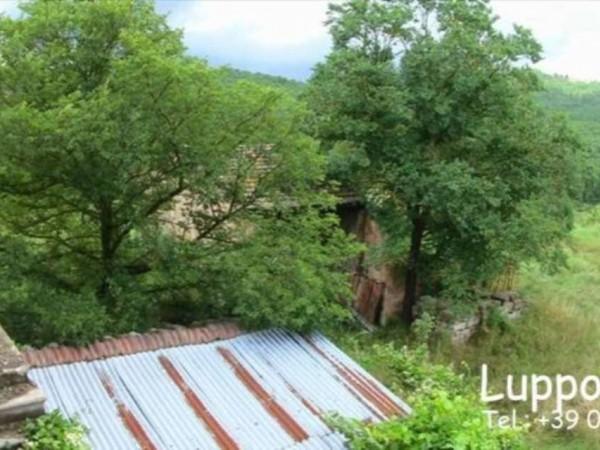 Villa in vendita a Murlo, Con giardino, 500 mq - Foto 5