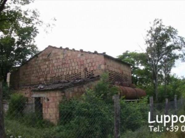 Villa in vendita a Murlo, Con giardino, 500 mq - Foto 2