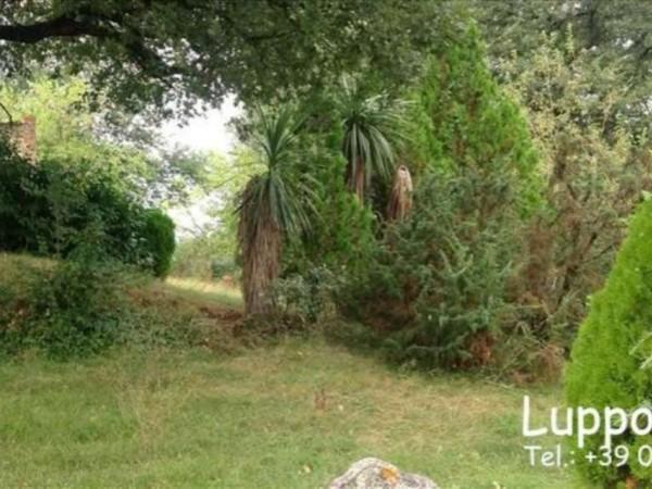 Villa in vendita a Rapolano Terme, Con giardino, 500 mq - Foto 3