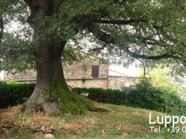 Villa in vendita a Rapolano Terme, Con giardino, 500 mq - Foto 4