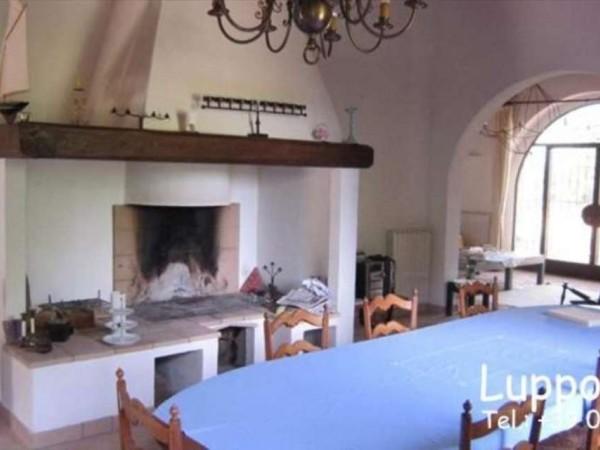 Villa in vendita a Casole d'Elsa, Con giardino, 900 mq - Foto 9