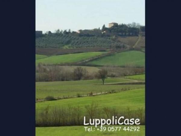 Villa in vendita a Monteroni d'Arbia, Con giardino, 1000 mq