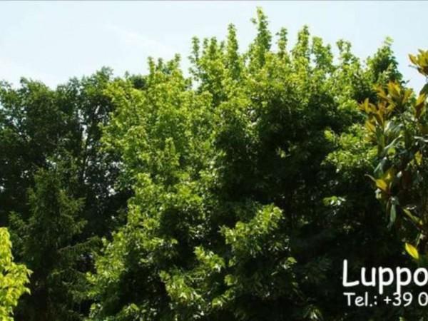 Appartamento in vendita a Monteroni d'Arbia, Con giardino, 100 mq - Foto 4