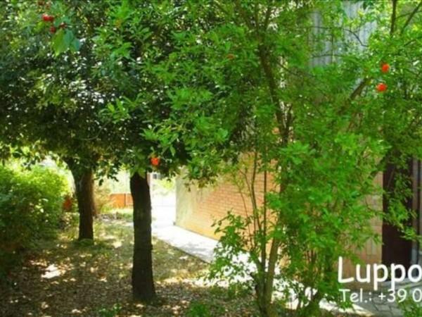 Appartamento in vendita a Monteroni d'Arbia, Con giardino, 100 mq - Foto 3