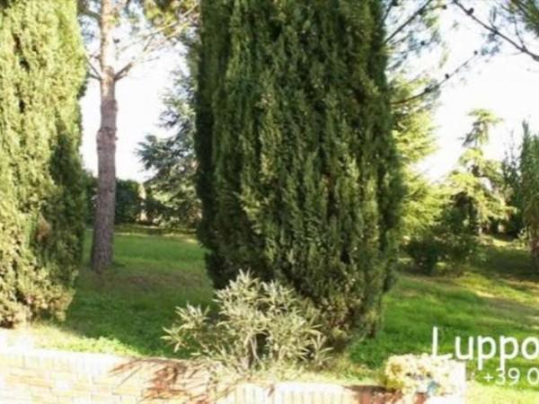 Villa in vendita a Siena, Con giardino, 480 mq - Foto 4