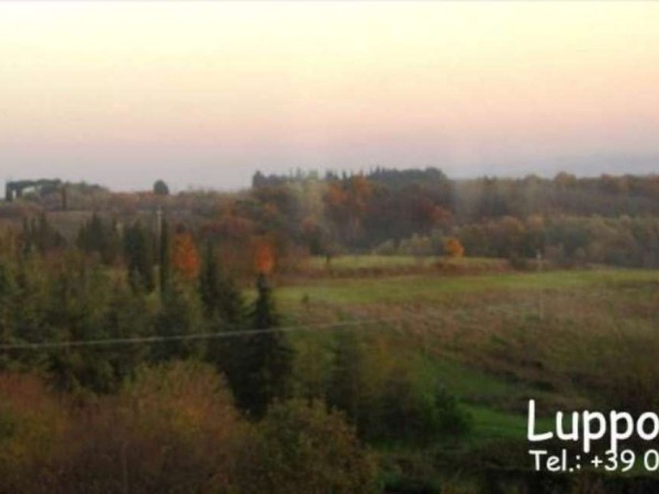 Villa in vendita a Siena, Con giardino, 480 mq - Foto 9