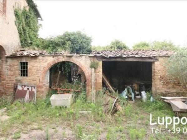 Villa in vendita a Siena, Con giardino, 700 mq - Foto 4
