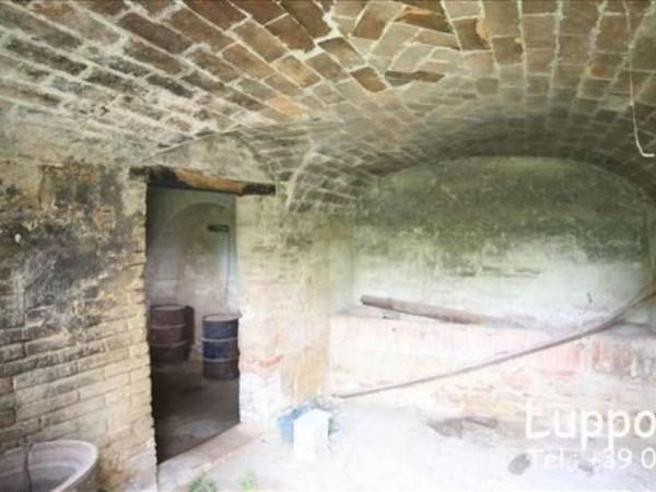 Villa in vendita a Siena, Con giardino, 700 mq - Foto 10