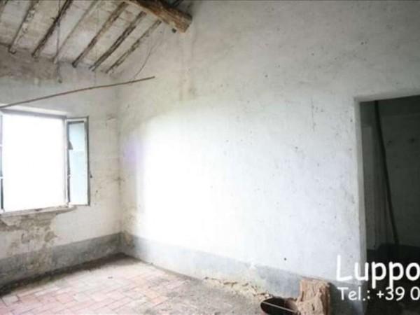 Villa in vendita a Siena, Con giardino, 700 mq - Foto 6