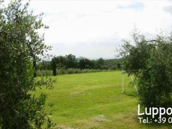 Villa in vendita a Sovicille, Con giardino, 550 mq - Foto 11