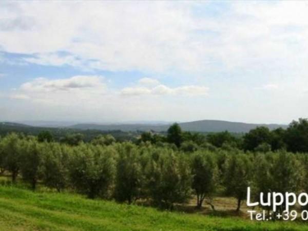 Villa in vendita a Sovicille, Con giardino, 550 mq - Foto 10