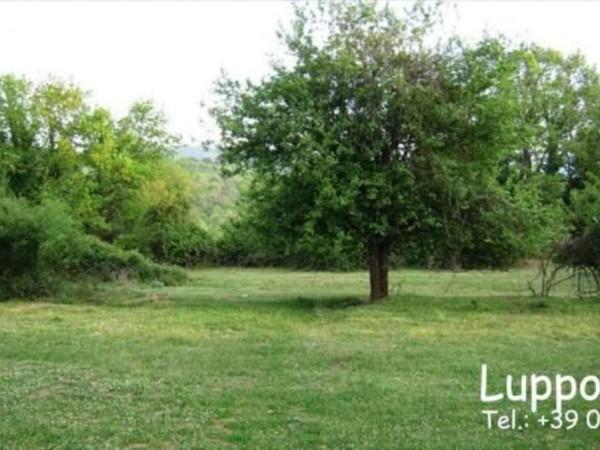 Villa in vendita a Sovicille, Con giardino, 800 mq - Foto 2