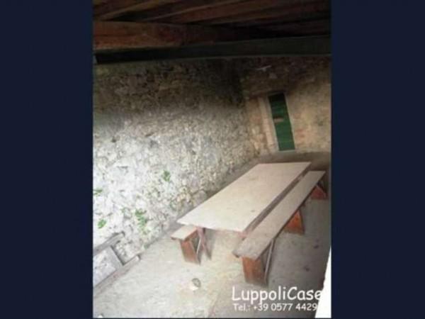 Villa in vendita a Sovicille, Con giardino, 800 mq - Foto 4