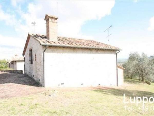 Villa in vendita a Sovicille, Con giardino, 450 mq - Foto 15