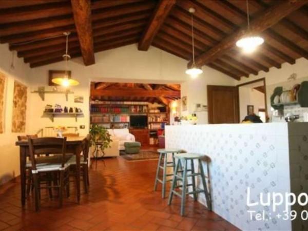 Villa in vendita a Sovicille, Con giardino, 450 mq - Foto 3