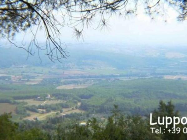 Villa in vendita a Sovicille, Con giardino, 300 mq - Foto 11