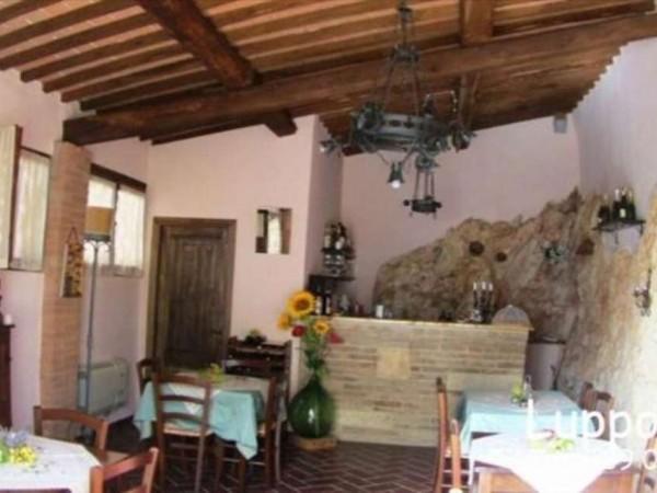 Villa in vendita a Sovicille, Con giardino, 700 mq - Foto 3