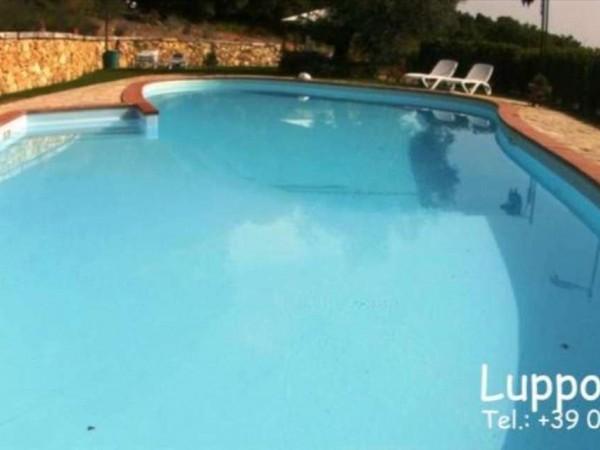Villa in vendita a Sovicille, Con giardino, 700 mq - Foto 6