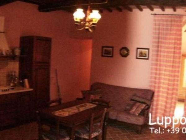 Villa in vendita a Sovicille, Con giardino, 700 mq - Foto 18