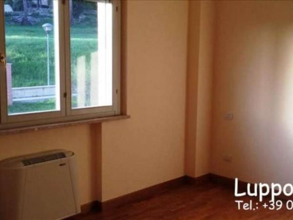 Appartamento in vendita a Sovicille, Con giardino, 260 mq - Foto 11