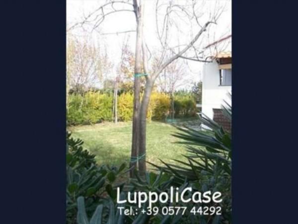 Appartamento in vendita a Follonica, Con giardino, 60 mq - Foto 1
