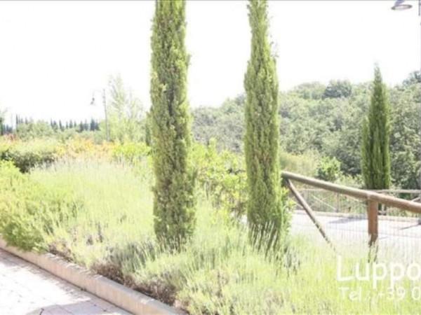 Appartamento in vendita a Monteriggioni, 92 mq - Foto 10