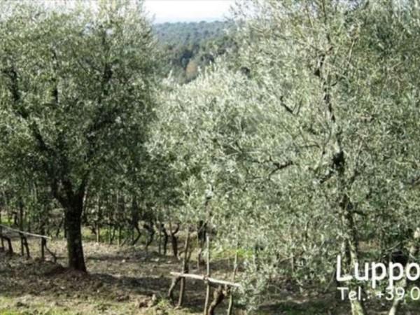 Villa in vendita a Castelnuovo Berardenga, Con giardino, 1000 mq - Foto 7