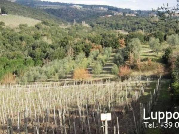 Villa in vendita a Castelnuovo Berardenga, Con giardino, 1000 mq - Foto 5