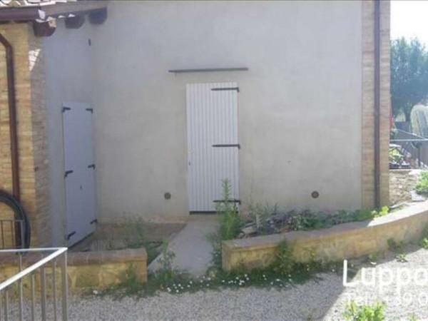 Appartamento in vendita a Castelnuovo Berardenga, Con giardino, 50 mq