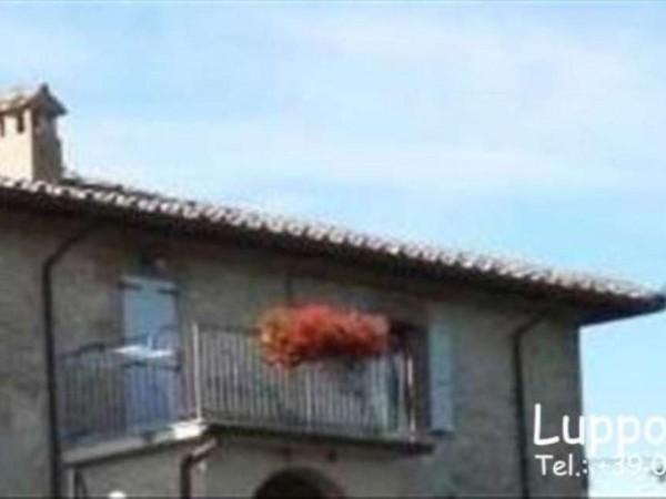 Appartamento in vendita a Castelnuovo Berardenga, Con giardino, 50 mq - Foto 8