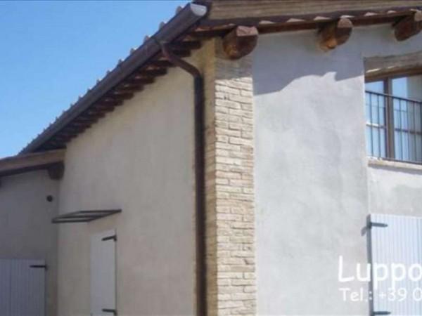 Appartamento in vendita a Castelnuovo Berardenga, Con giardino, 50 mq - Foto 11