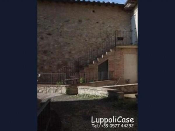 Appartamento in vendita a Castelnuovo Berardenga, Con giardino, 50 mq - Foto 5