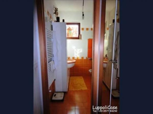 Appartamento in vendita a Castelnuovo Berardenga, Con giardino, 120 mq - Foto 5