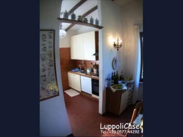 Villa in vendita a Castelnuovo Berardenga, Con giardino, 282 mq - Foto 7