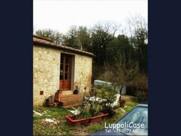 Villa in vendita a Castelnuovo Berardenga, 30 mq