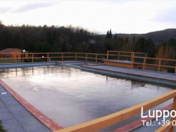 Villa in vendita a Radicondoli, Arredato, con giardino, 700 mq - Foto 5