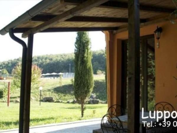 Villa in vendita a Radicondoli, Arredato, con giardino, 700 mq - Foto 20