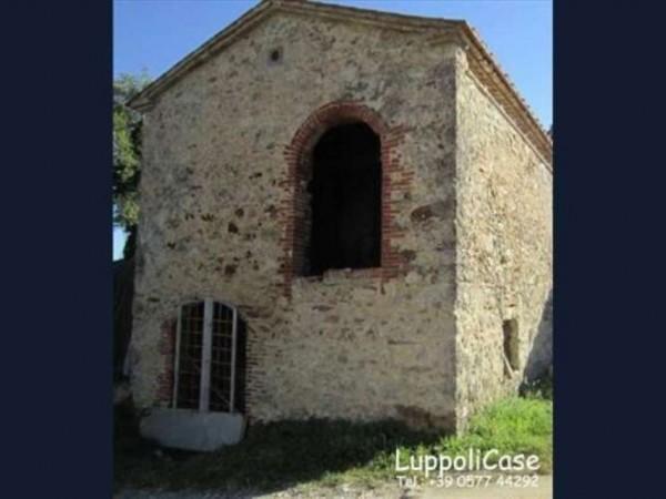 Villa in vendita a Montieri, Con giardino, 300 mq